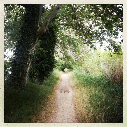 chemin de halage champêtre à vias