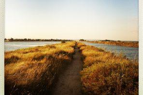 Canal du Midi Étape 10 : de Béziers jusqu'à Marseillan à pied