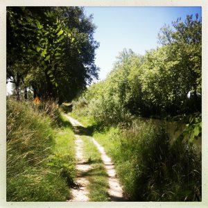 chemin halage vers castanet canal du midi