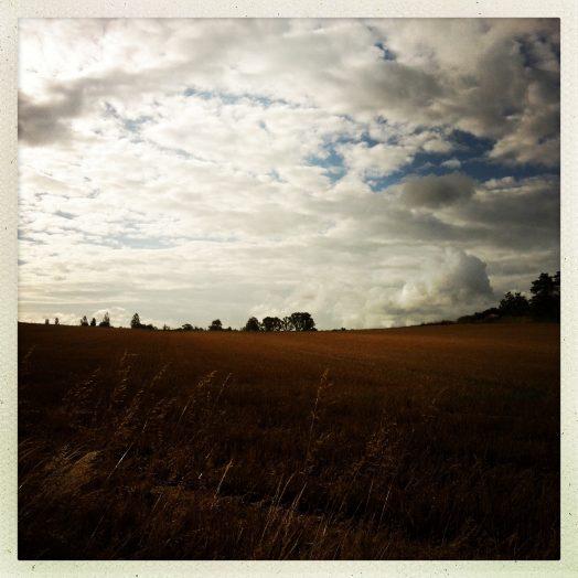 un champ près du seuil de Naurouze