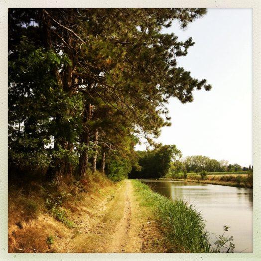 chemin de halage vers écluse saint martin canal du midi