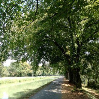 voie verte du canal de montech à vélo