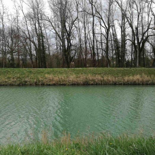 canal de montech montauban en hiver