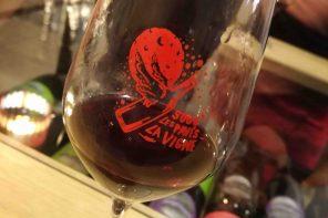 Les vignobles du Tarn-et-Garonne. Le domaine AntocyÂme